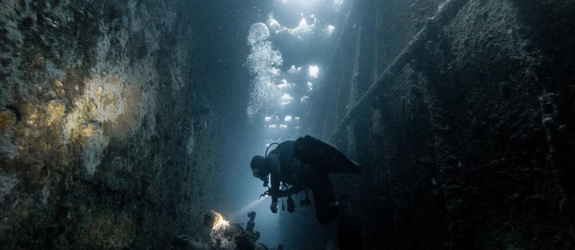 duikbegeleiding
